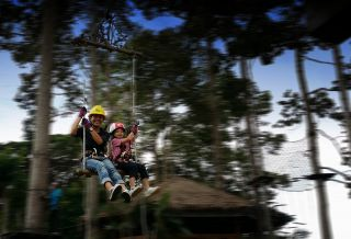 fly from treetop to treetop on a swing - Krabi Fun Park