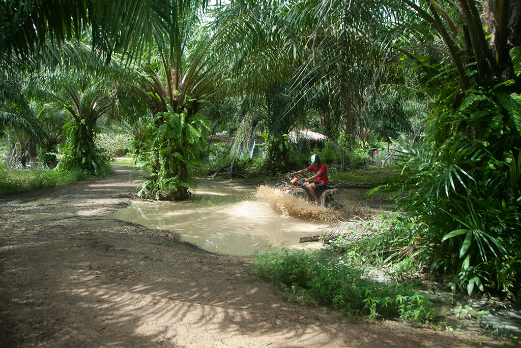 1 hour ATV experience near to Ao Nang