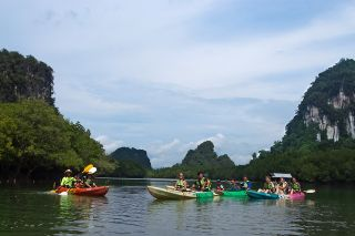 Paddle along the cool river lined with natural forest.
