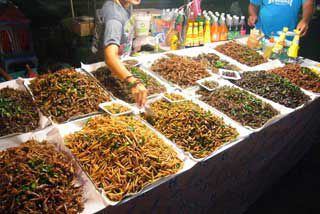 selection of edible insects at Krabi Night Market